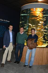 diseno-acuario-sevilla-arquitectos